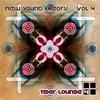 Couverture de l'album New Sound Theory, Vol. 4