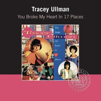 Cover of the track You Broke My Heart In Seventeen Places