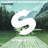 Couverture du titre Eagle Eyes (Lucas & Steve remix)
