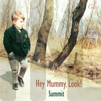 Cover of the track Summit