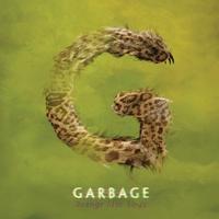 Cover of the track Strange Little Birds