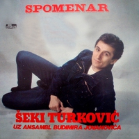 Cover of the track Spomenar (Serbian Music)