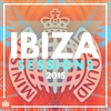 Cover of the album Ibiza Sessions 2013 - Ministry of Sound