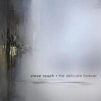 Couverture du titre The Delicate Forever