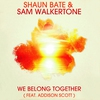 Couverture de l'album We Belong Together (feat. Addison Scott) [Radio Edit] - Single