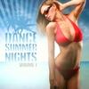 Couverture de l'album Dance Summer Nights: Vol. 1