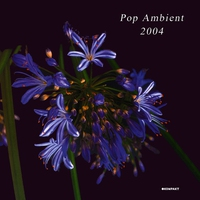 Cover of the track Pop Ambient 2003