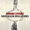 Cover of the album Fangnawa Experience