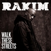 Cover of the album Walk These Streets (feat. Maino and Tracey Horton) - Single