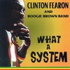 Cover of the album What a System