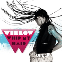 Cover of the track Whip My Hair - Single