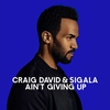 Couverture du titre Aint Giving Up (feat. Sigala)