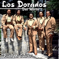 Cover of the track Cumbia a San Nicolas