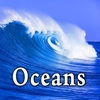 Cover of the track Heavy Ocean Surf Ambience with Seagulls