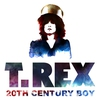 Cover of the album 20th Century Boy - Single