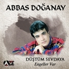 Cover of the album Düştüm Sevdaya / Engeller Var