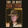 Cover of the album Rain Crow