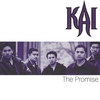 Couverture de l'album The Promise