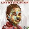Couverture de l'album Live My Life Again