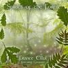 Couverture de l'album Spirits of the Forest