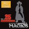 Couverture de l'album 25 Bandazos de Machos, Vol. 1