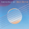Couverture de l'album Forever Blue Sky