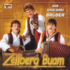 Cover of the album Wir sind drei Brüder