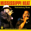 Couverture de l'album Hattiesburg Blues