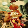 Couverture de l'album Dig Out Your Soul