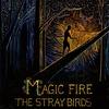 Couverture de l'album Magic Fire