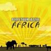 Couverture de l'album Perpetuum Jazzile Africa