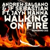 Cover of the album Walking On Fire - Single