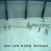 Couverture de l'album Blast of Silence