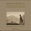 Cover of the album Montagnola