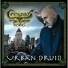 Cover of the album Urban Druid