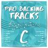 Couverture de l'album Pro Backing Tracks, Vol. 1
