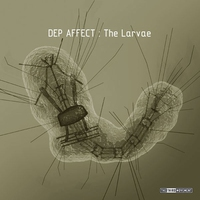 Cover of the track The Larvae - EP