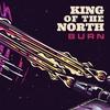 Couverture de l'album Burn - Single