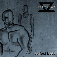 Cover of the track Perfect Body