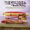 Couverture de l'album Twenty Songs of the Chosen Surfers