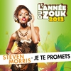 Cover of the album Je te promets (L'année du zouk 2013) - Single