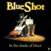 Cover of the album In the Shade of Blues