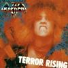 Couverture de l'album Terror Rising