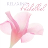 Couverture de l'album Relaxing Pachelbel