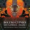 Cover of the album Bolero Gypsies: New Flamenco, Vol. 1