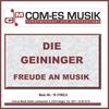 Couverture de l'album Freude an Musik