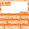 Cover of the album Dj Gard The Remixes