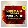 Couverture de l'album Deep House Autumn Season 2012 - Underground Sounds, Vol.1