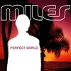 Cover of the album Perfect World - EP