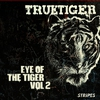 Cover of the album Eye of the Tiger, Vol. 2